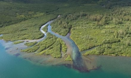 TRCP: Why We're Still Not Past Pebble Mine