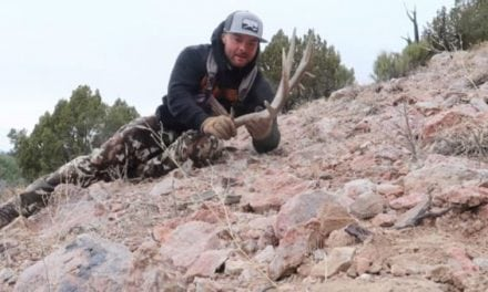 Video: Finding Monster Mule Deer Sheds with the Hushin Crew