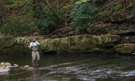Bay Journal – Federal protection sought for Savage River