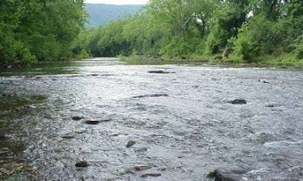 DuPont agrees to pay $50 million to restore contaminated Virginia rivers
