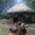 Primitive Technology: Build a Rain-Proof Hut in the Jungle