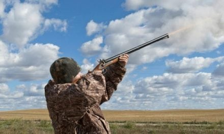 Top 5 Muzzleloaders for Hunting