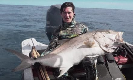 Check Out This Awesome Spearfishing Video From Seacarios