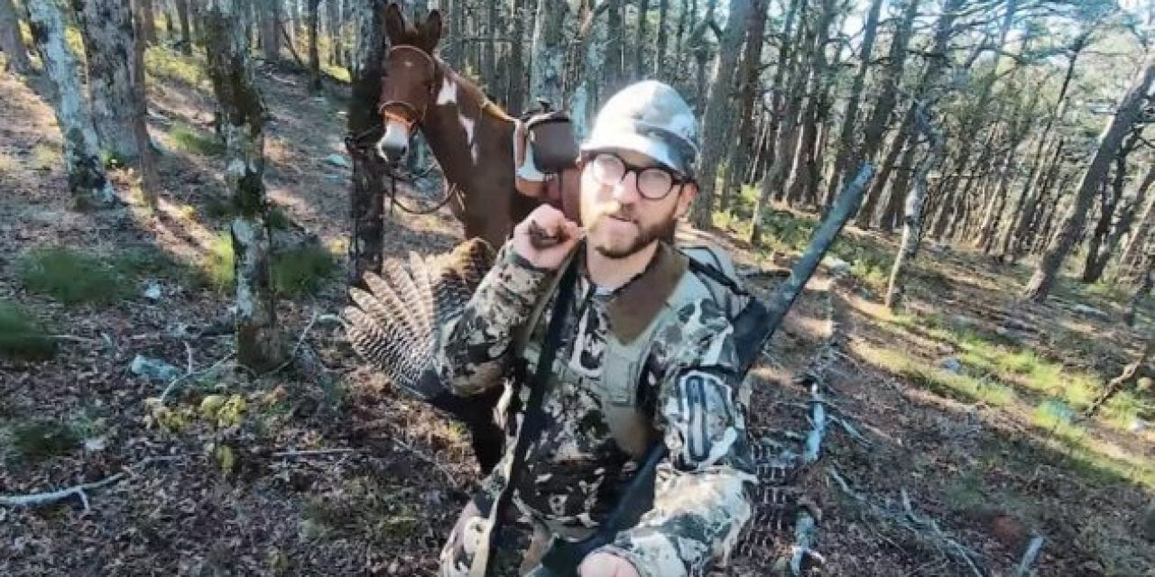 Check Out This Backcountry Turkey Hunt In Arkansas