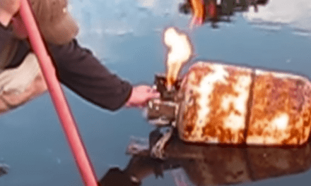 Ever Wondered What Would Happen If You Shot a Propane Tank?