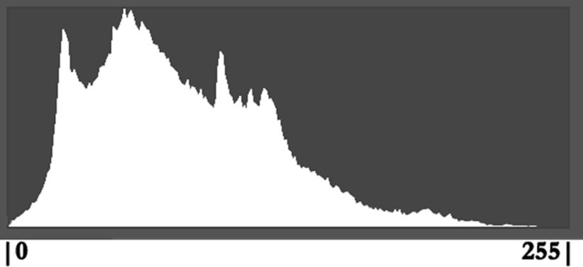 A simple histogram to help you learn how to use histograms