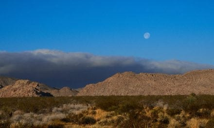 Landscape Lessons Joshua Tree, Part 1: Scouting Locations