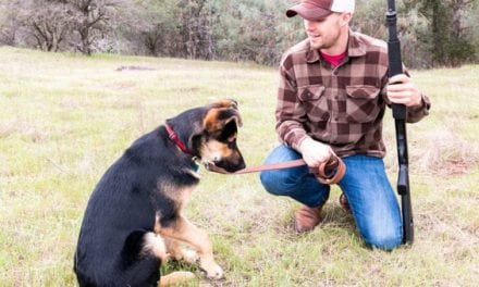 5 Best Buys for the Canine-Owning Outdoorsman