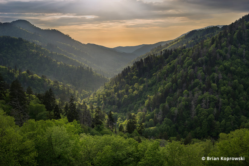 Morton Overlook, Great Smoky Mountains National Park, Tennessee