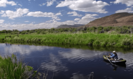 Todd Moen's Airstream Fly Fishing Video is a Must-See