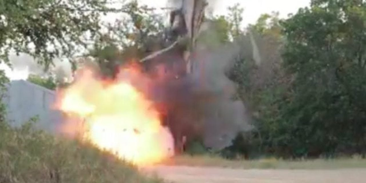 Video: If You Need to Move a Tree, Just Blow It Up