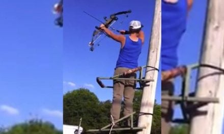 Video: This Guy Doesn't Use a Safety Belt on His Treestand and Goes Down