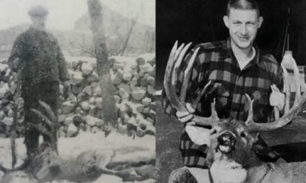 #WhitetailWednesday: 7 Bucks That Pre-Date High Fences and Genetic Engineering
