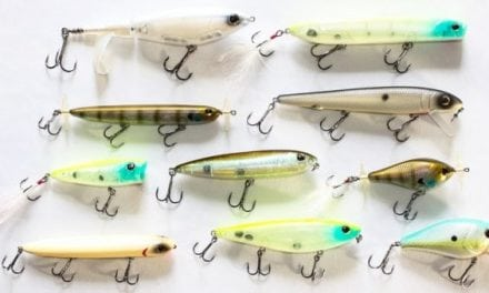 10 New Berkley Topwater Fishing Lures Released for 2018