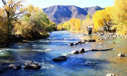 12 Best Trout Fishing Destinations in Colorado