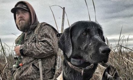 Now's Your Chance to Enter the SportDOG® Giveaway!