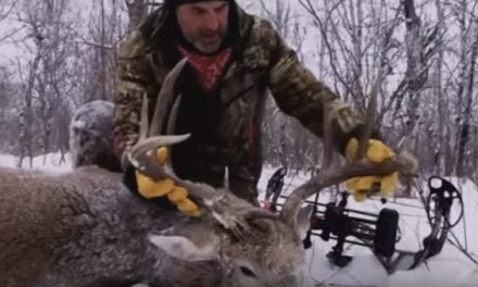 Video: Are These the Best Archery Kills of All Time?
