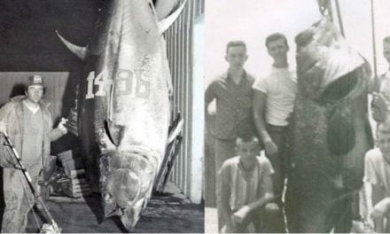 16 Saltwater Fishing Records That Have Stood for a Ridiculously Long Time