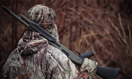 8 Most Versatile Hunting Shotguns