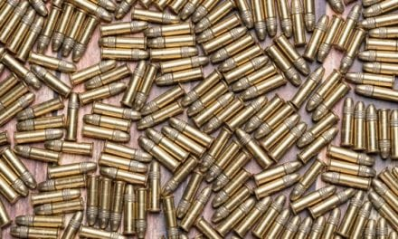 Feed Your .22 With These 7 Great Ammo Buys