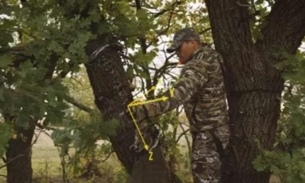 Is the Mathews Triax the Best Bow for the 2018 Bowhunting Season?