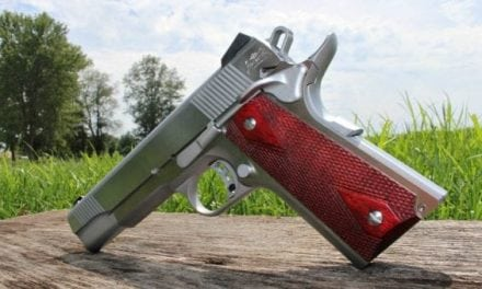Sheer Beauty: Stainless Steel 1911 From Palmetto State Armory