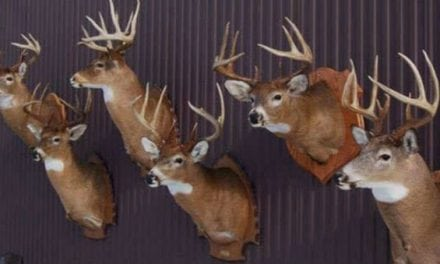 #WhitetailWednesday: 5 Deer Season Goals That Don't Involve a Successful Harvest