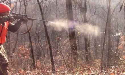 Why a Deer Drive Can Be the Best or Worst Hunting Technique