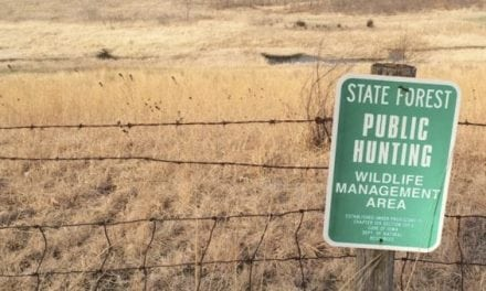 Why I'm Deer Hunting Public Land This Year