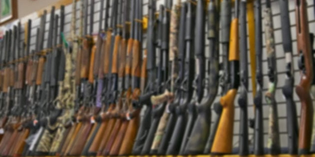 4 Youth Hunting Rifles Perfect for Any Youngster Just Starting Out