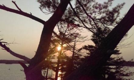 Camping at Killbear Provincial Park: 8 Things You Need to Know