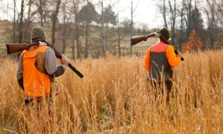 Conservation in Peril as Hunter Numbers Decline
