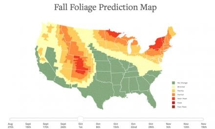 Plan Your Fall Color Photography With This Prediction Map