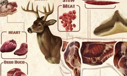 This Diagram Makes Butchering a Deer Look Easy