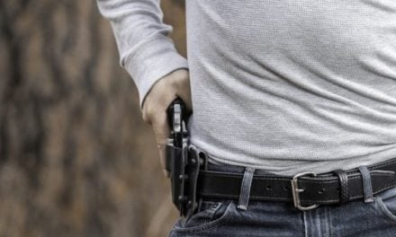 Top 10 Revolvers for Concealed Carry