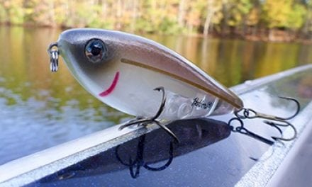 Top Picks for Late Summer Bass