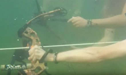 Video: Is Underwater Bowfishing Even Possible?