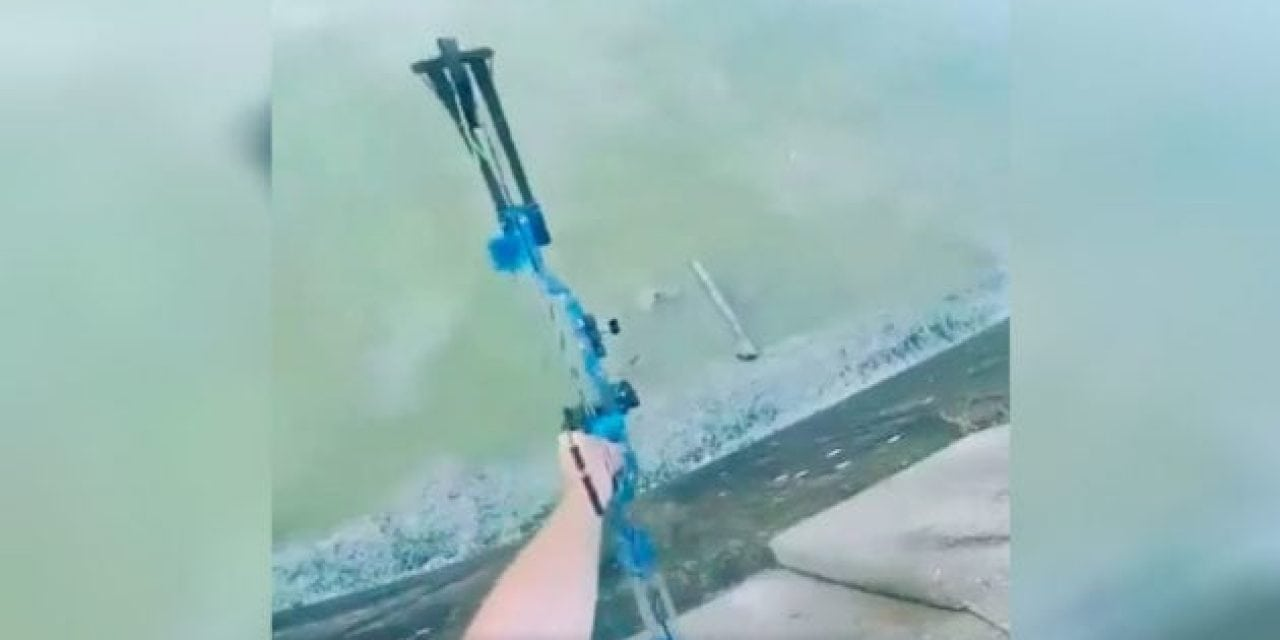 Video: Nailed It! Highest, Straightest Bowfishing Shot You've Ever Seen
