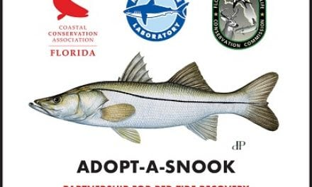 WEST COAST SNOOK POPULATION RECOVERY EFFORT FOLLOWING RED TIDE