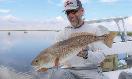Big Redfish, Snook & Seatrout Tips