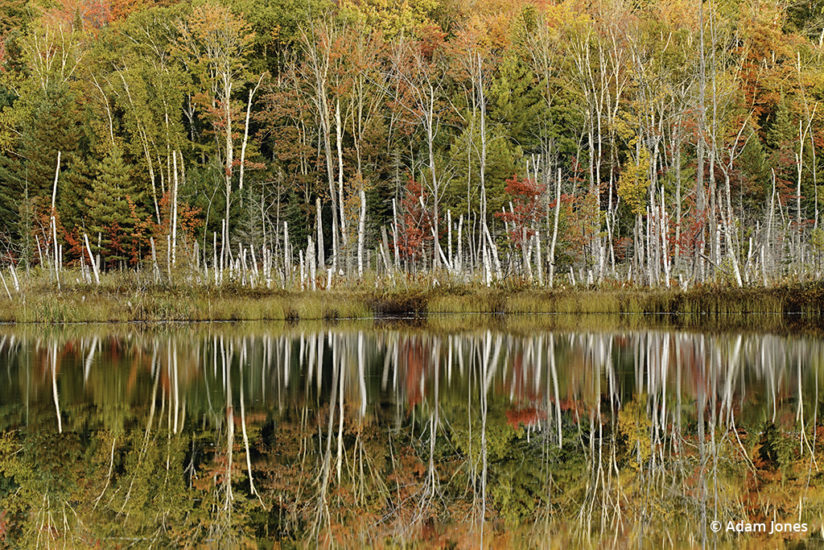 Favorite Fall Color Photo Locations: Michigan's Upper Peninsula