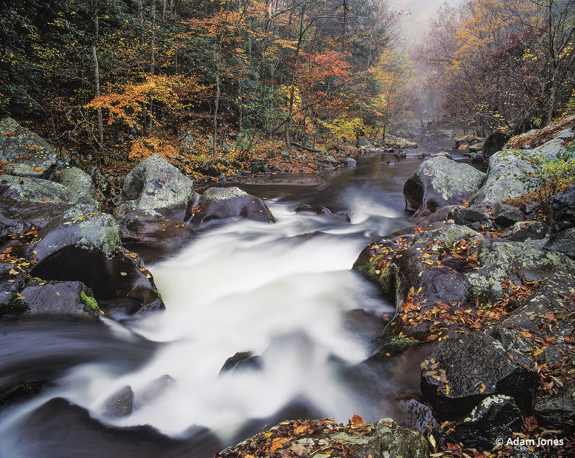 Favorite Fall Color Photo Locations: Great Smoky Mountains