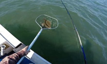 This Flounder Fishing Technique Works Every Time