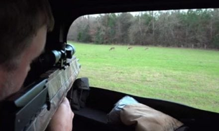 Watch This Man Hunt With a Crosman Pioneer Airbow