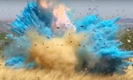 Man Accidentally Causes Huge Wildfire at Gender Reveal Party