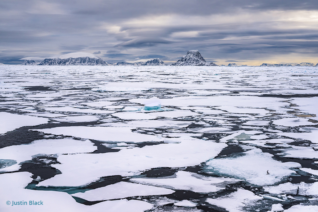 Arctic pack ice captured with a standard focal length lens