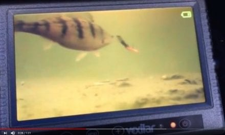 Vexilar Fish Scout Color / B-W Underwater Camera w / Case