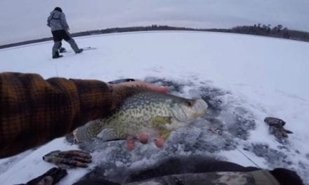 Video: How Cold Is It? Well, apbassing is Ice Fishing Already…