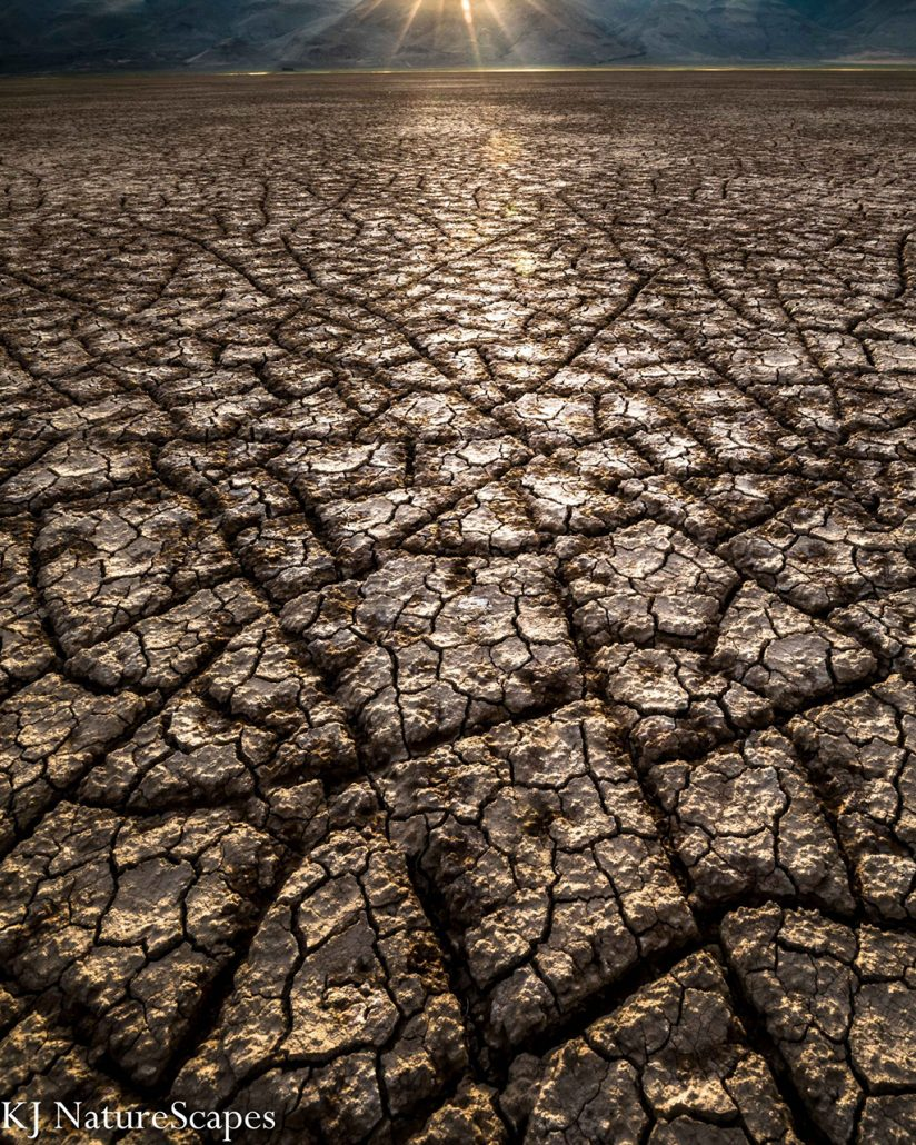 """Today's Photo Of The Day is """"Craving Brownies"""" by Kelsey Underhill. Location: Alvord Desert, Oregon."""