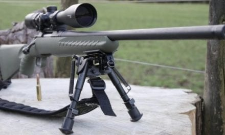 Everything You Need to Know About the Ruger American Predator Rifle